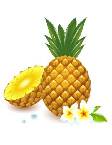 Ananas & Frangipanier