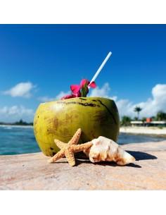 Caraïbes - Fondant parfumé